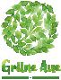Logo des Bauvorhabens Grüne Aue, bestehend aus Schriftzug und stilisierter Baumkrone