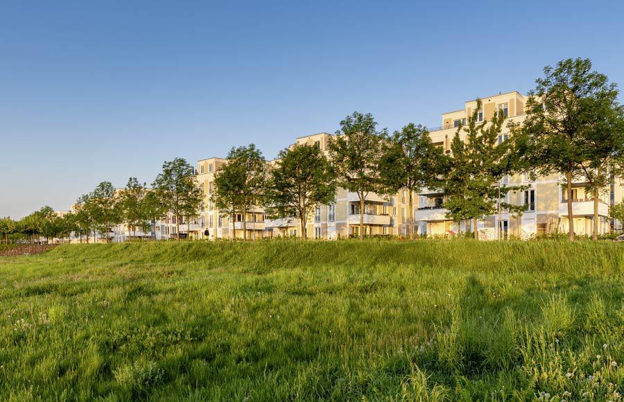 Wohnen an den Gärten der Welt - Blick von grüner Wiese auf die sonnenbeschienenen Stadtvillen und die davor gepflanzten Bäume