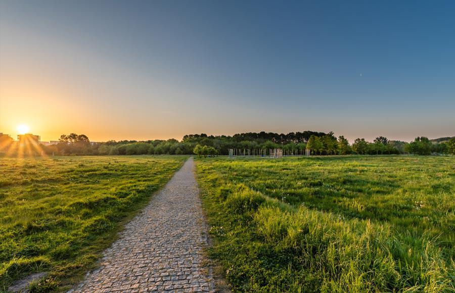 Wohnen an den Gärten der Welt - Blick in den grünen Park mit Sonnenaufgang